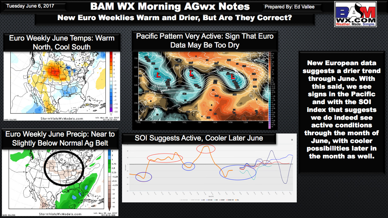 #AGwx #Plant17 Going against new data…our reasoning in today's video update. M.
